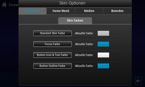 Skin Einstellungen